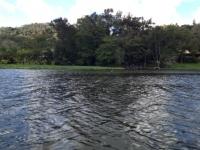 Vista desde lago